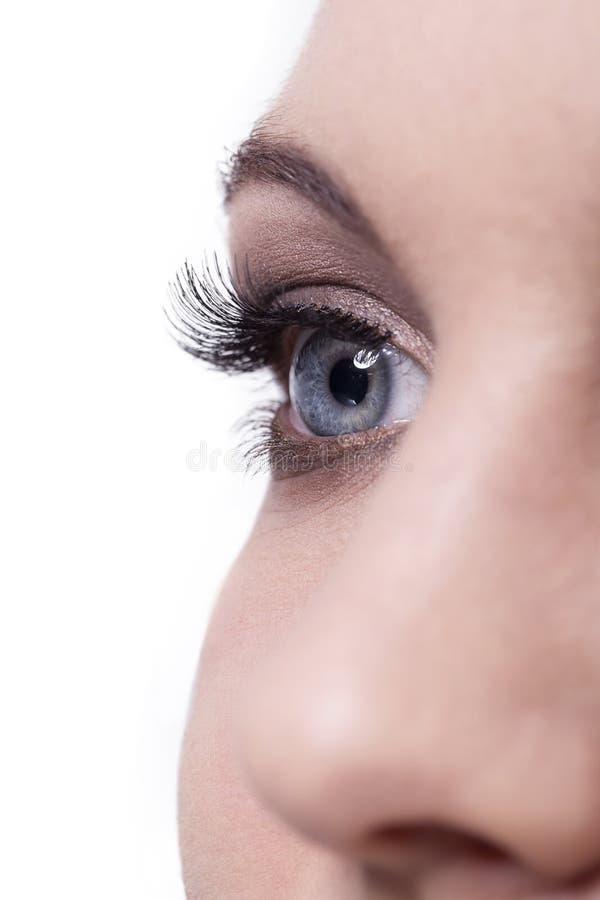 Fermez-vous de l'oeil et du nez femelles humains sur le blanc images libres de droits