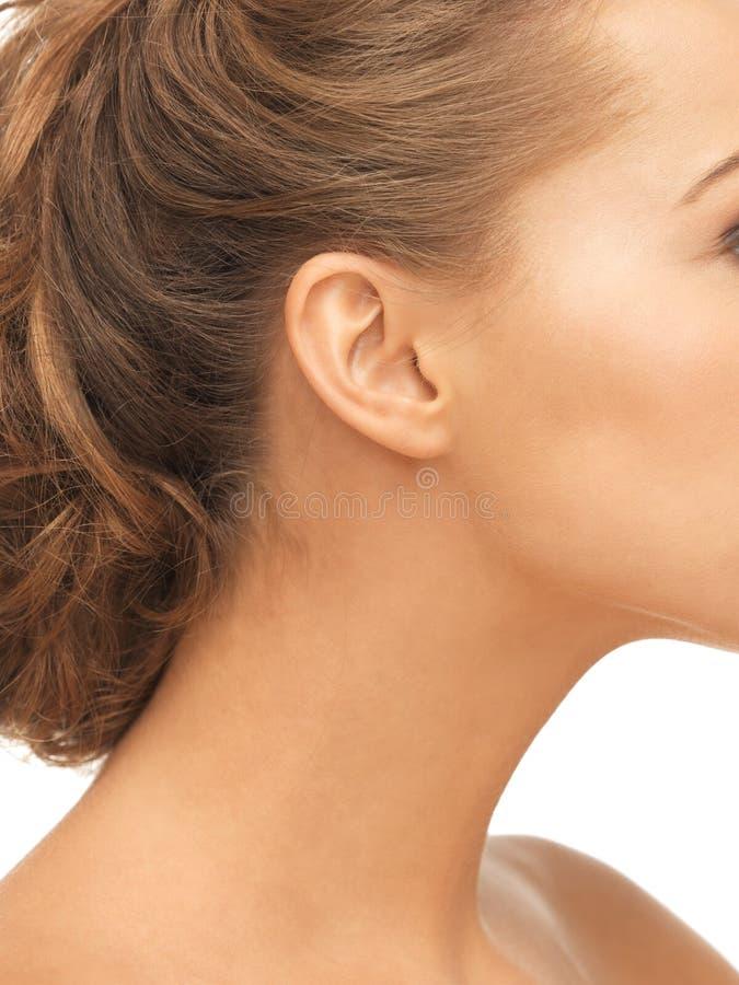 Fermez-vous de l'oreille de femme photographie stock libre de droits