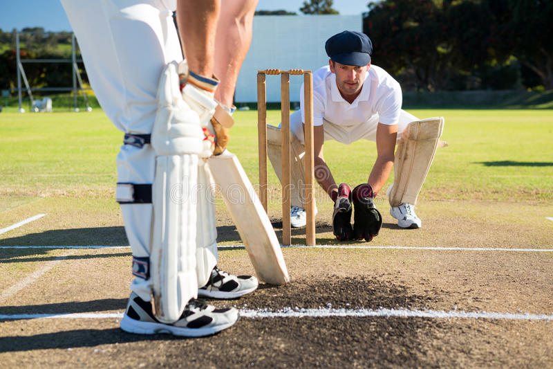 Fermez-vous de l'ouate en feuille de l'homme tout en playying le cricket au champ image stock