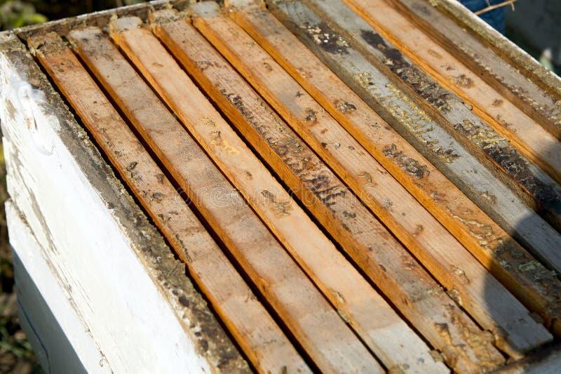 Fermez-vous de la boîte de l'apiculture de miel de bois de construction images libres de droits