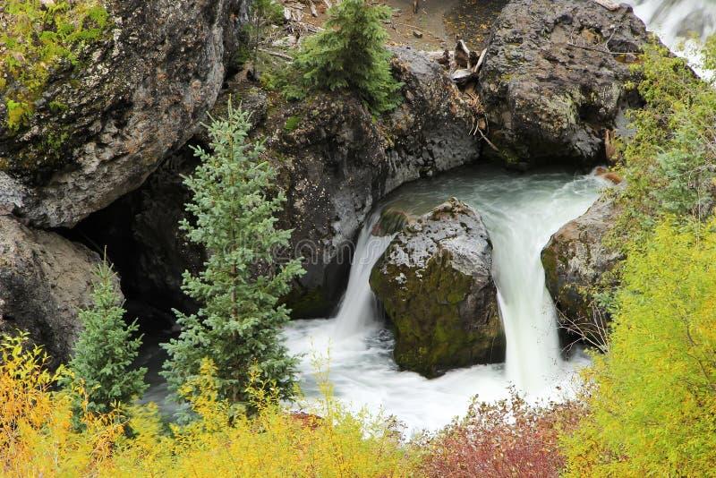 Fermez-vous de la crique de Sneffels, chaîne de Sneffels de bâti, le Colorado photos libres de droits