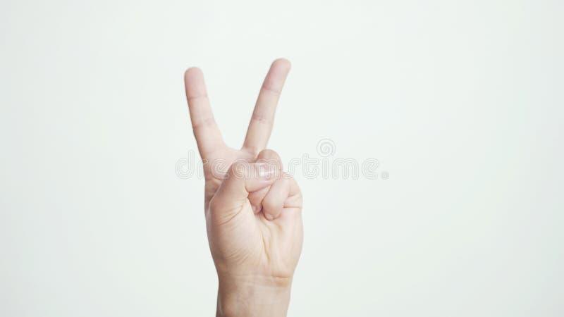 Fermez-vous de la main femelle d'isolement montre différents signes d'isolement sur le fond blanc photo stock