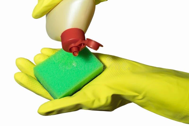 Fermez-vous de la main femelle dans le gant en caoutchouc protecteur jaune tenant l'éponge verte de nettoyage sur le fond blanc photographie stock libre de droits