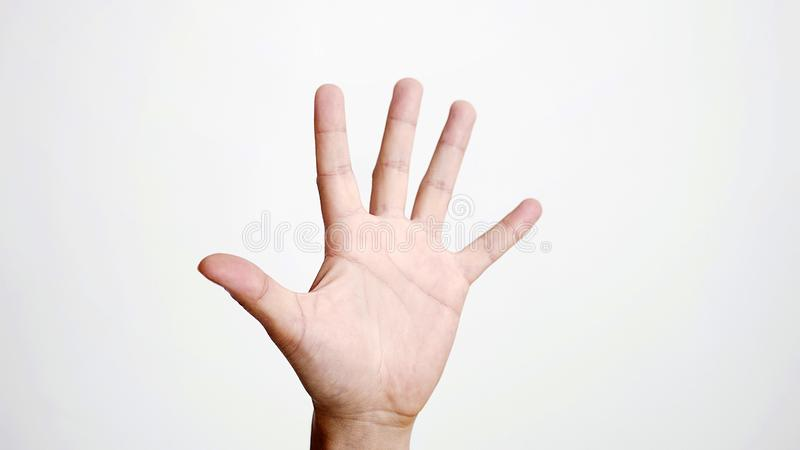 Fermez-vous de la paume femelle d'expositions de main d'isolement sur le fond blanc images libres de droits