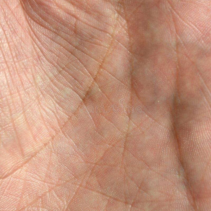 Fermez-vous de la peau humaine de main avec la texture et les lignes évidentes de peau image libre de droits