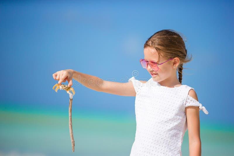 Fermez-vous de la petite fille tenant le crabe sur la plage sablonneuse photographie stock