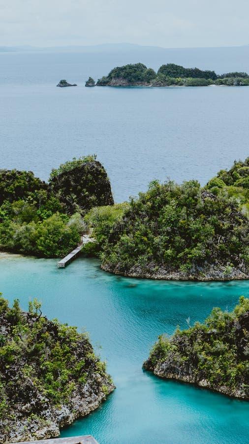 Fermez-vous de la petite jetée entre l'île de Pianemo envahie avec des usines de jungle, entourées par la lagune bleue peu profon photo libre de droits