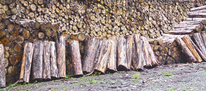 Fermez-vous de la pile énorme de rondins de bois de chauffage photos stock