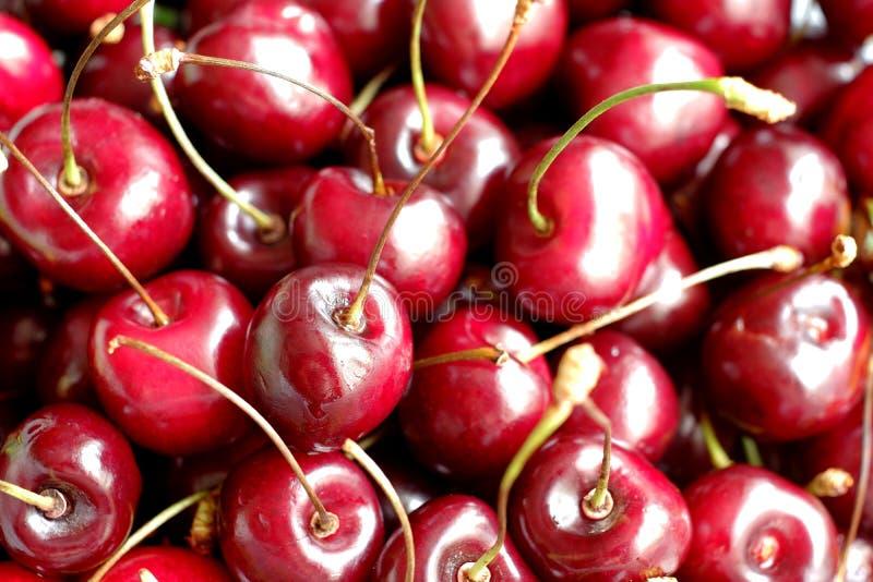 Fermez-vous de la pile des cerises rouge foncé mûres photos stock