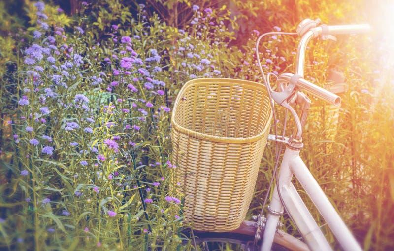 Fermez-vous de la poignée de la bicyclette dans le jardin d'agrément images stock
