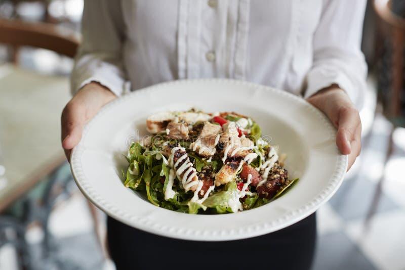 Fermez-vous de la salade de poulet de Holding Plate Of de serveuse dans le restaurant images libres de droits