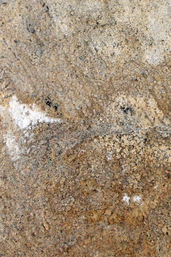 Fermez-vous de la surface en béton après des dommages de l'eau image libre de droits