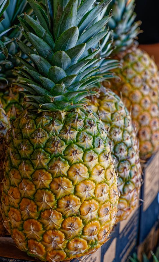 Fermez-vous des ananas frais à vendre images stock