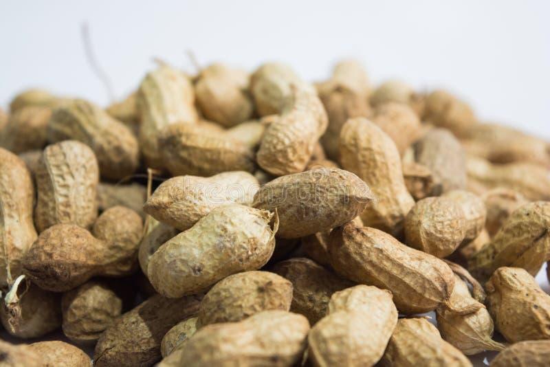 Fermez-vous des arachides ou des arachides avec la cuillère en bois sur le fond d'isolement photo libre de droits