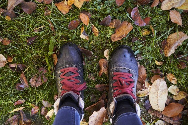Fermez-vous des bottes du ` s de femme en Autumn Leaves image stock