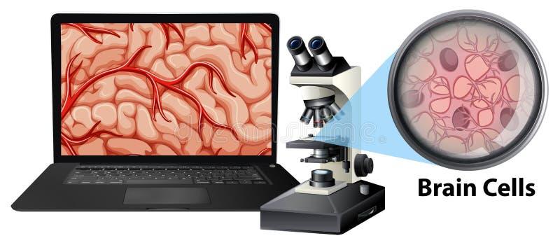 Fermez-vous des cellules du cerveau avec le mircoscope et l'ordinateur portable illustration de vecteur