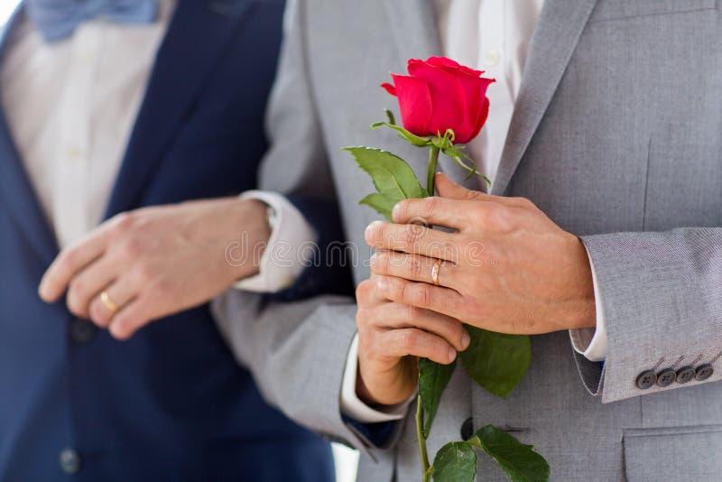 Fermez-vous des couples gais masculins heureux tenant des mains image stock