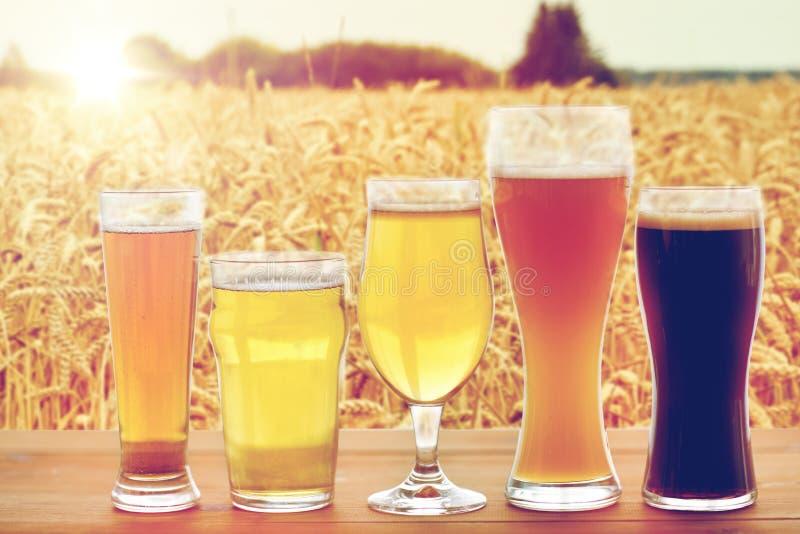 Fermez-vous des différentes bières en verres sur la table photographie stock libre de droits
