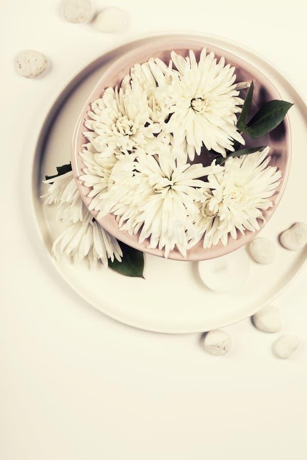 Fermez-vous des fleurs flottant dans la cuvette de l'eau photos stock