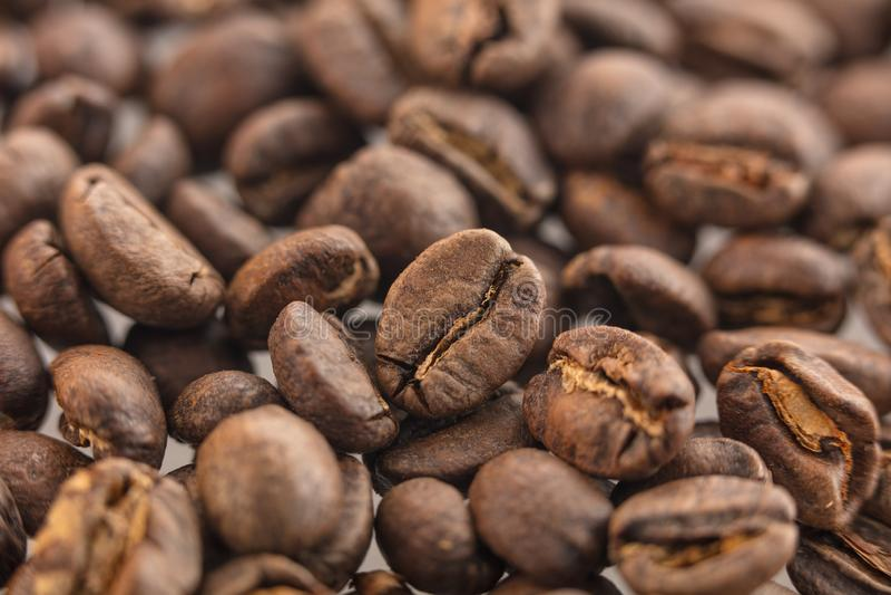Fermez-vous des graines de café pour desing photos libres de droits