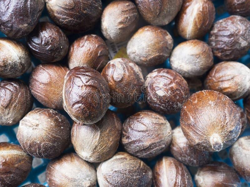 Fermez-vous des graines de noix de muscade images stock