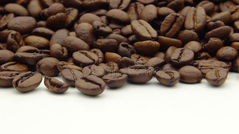 Fermez-vous des grains de caf? r?tis sur le fond blanc images libres de droits