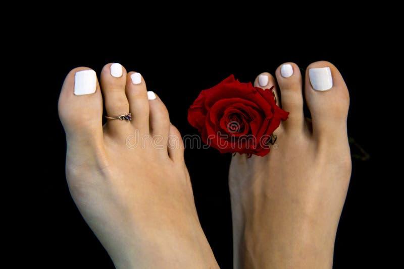 Fermez-vous des jolis pieds de fille en détail avec la fleur de rose de rouge d'isolement sur le fond noir, ` grec de pied de ` c photo libre de droits