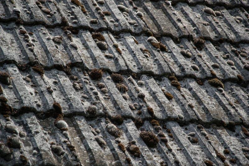 fermez vous des tuiles de toiture g es sur la vieille maison dans le village beaucoup de mousse. Black Bedroom Furniture Sets. Home Design Ideas