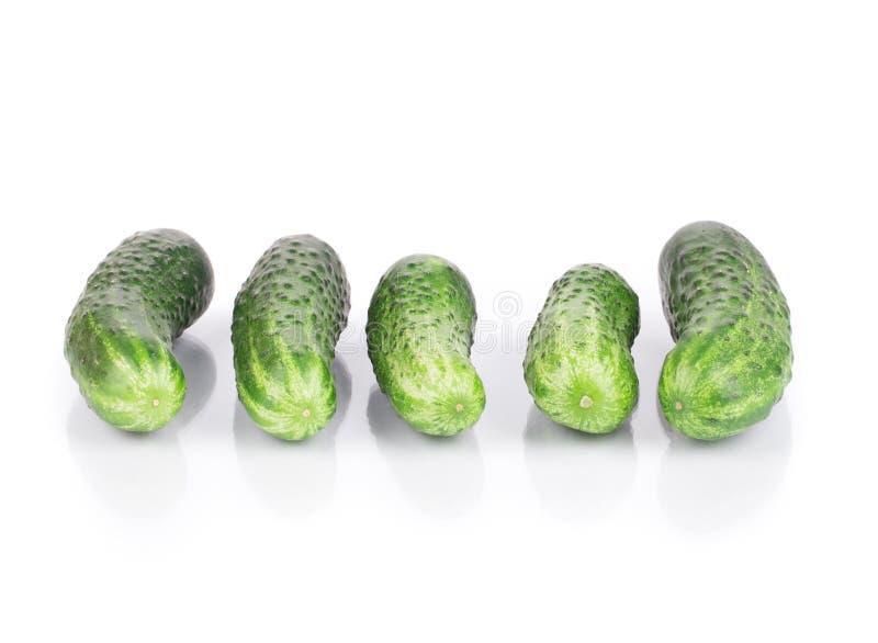 Fermez-vous du concombre frais image stock