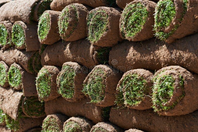 Fermez-vous du gazon Rolls attendant pour être étendu en tant que nouvelle pelouse photographie stock