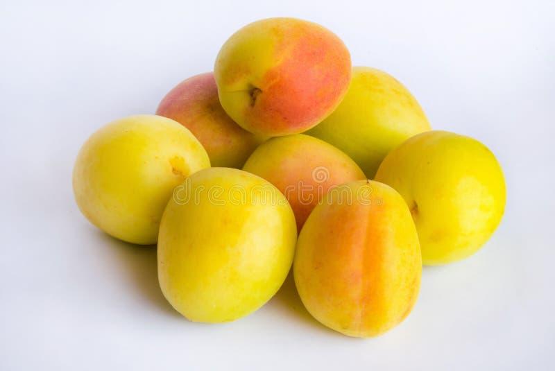 Fermez-vous du groupe de l'abricot organique frais sur un backgrpund blanc photo libre de droits