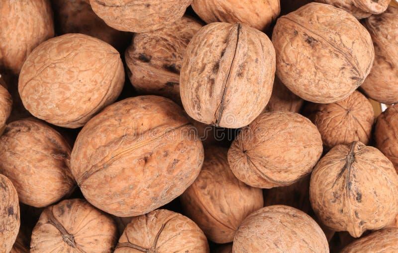 Fermez-vous du groupe de noix. photographie stock libre de droits
