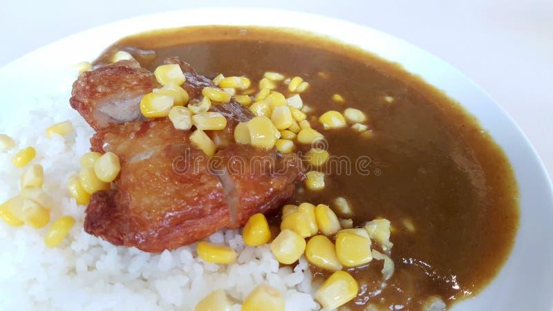 Fermez-vous du riz de cari de poulet images libres de droits