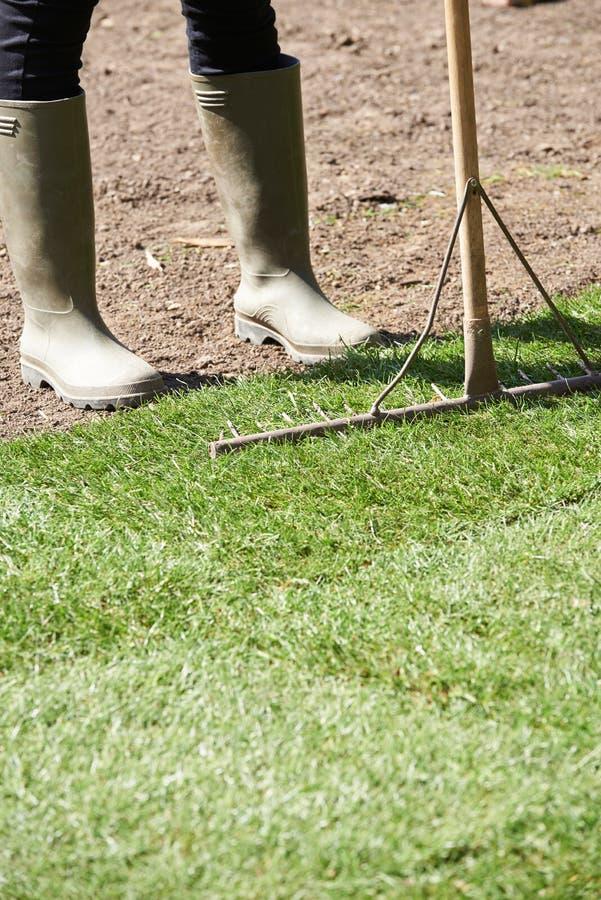 Fermez-vous pelouse de Laying Turf For de jardinier de paysage de la nouvelle photo stock