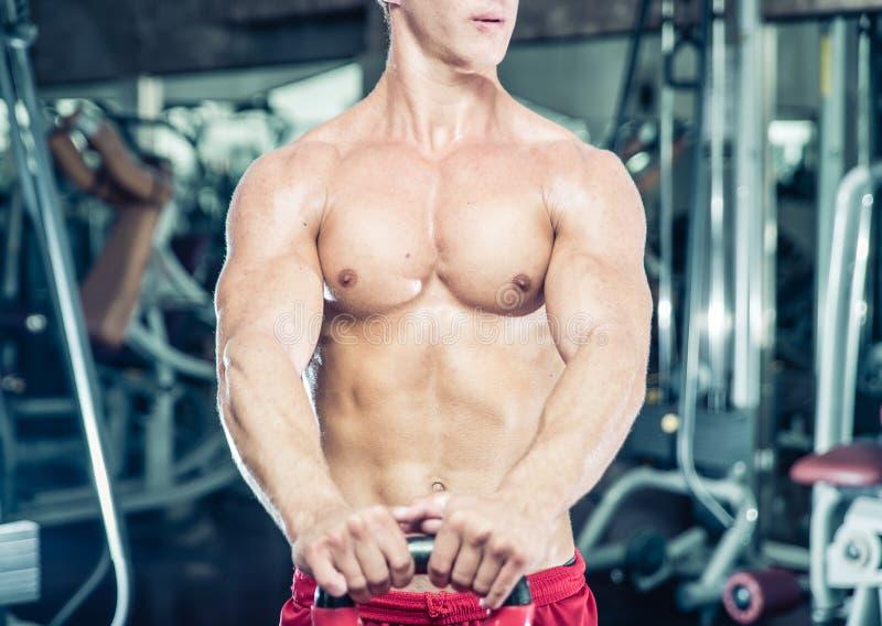 Fermez-vous sur le coffre d'un bodybuilder images libres de droits