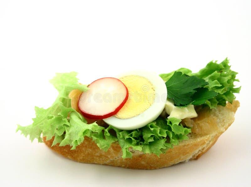 Fermez-vous vers le haut au sandwich photo libre de droits