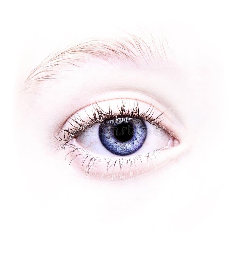 Fermez-vous vers le haut d'un œil bleu photo stock