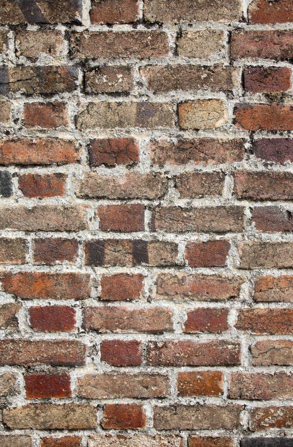 Fermez-vous vers le haut d'un vieux mur de briques. images stock
