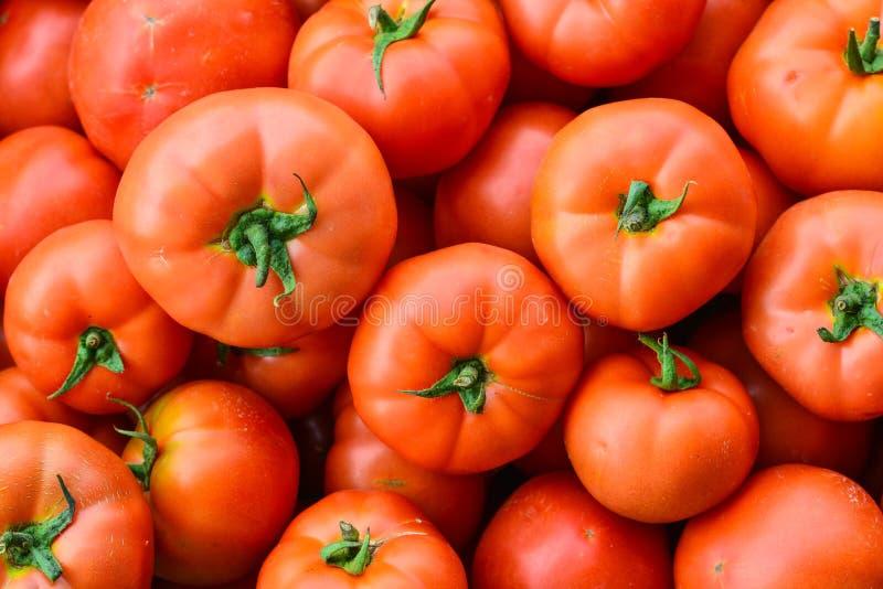 Fermez-vous vers le haut de beaucoup de tomates rouges fraîches photos stock