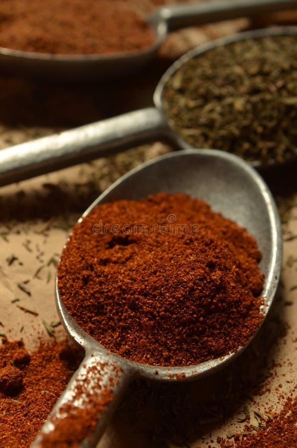 Fermez-vous vers le haut de la cuillère d'étain de vue avec la poudre de paprika image stock