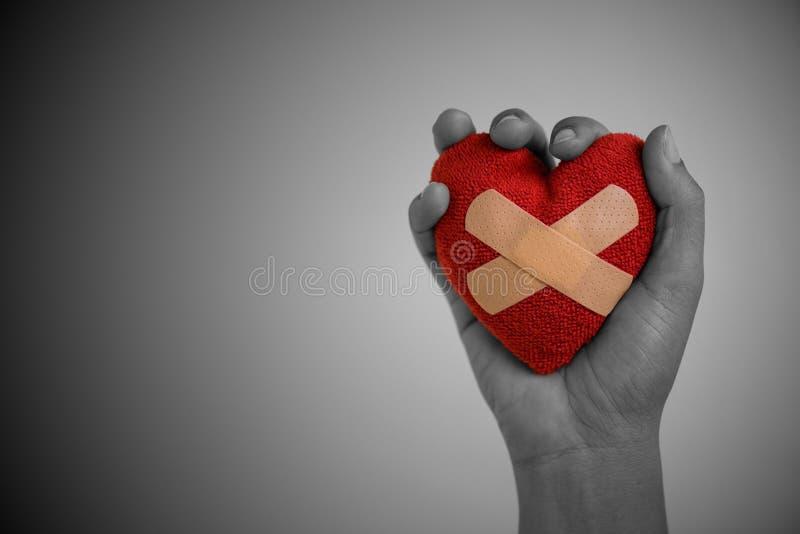Fermez-vous vers le haut de la main de jeune femme tenant le coeur rouge images stock