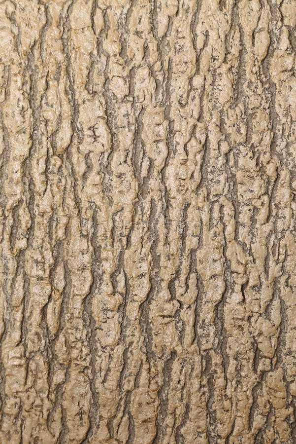 Fermez-vous vers le haut de la texture de l'arbre brun. photo stock