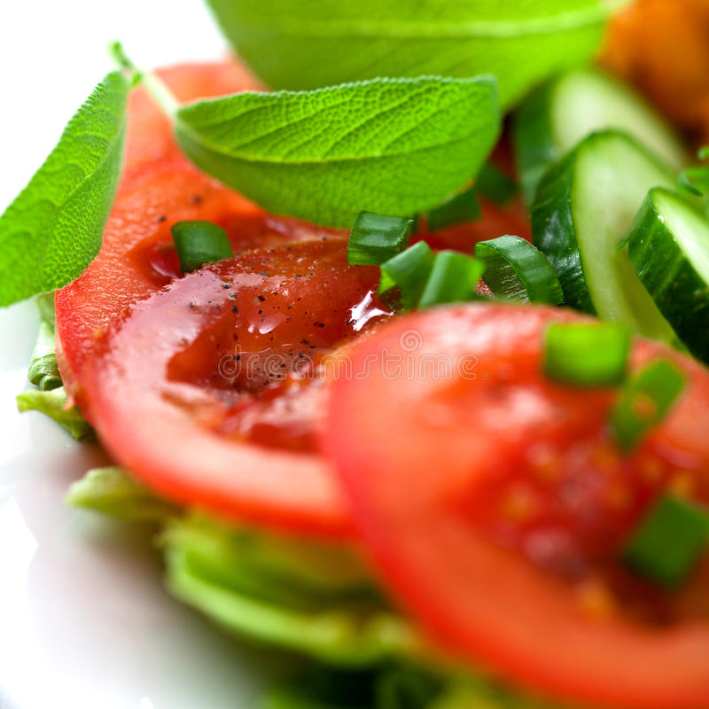 Fermez-vous vers le haut de la tomate images libres de droits