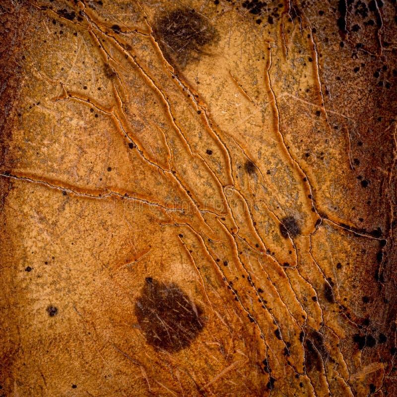 Fermez-vous vers le haut de la vieux texture et fond en cuir bruns photographie stock libre de droits