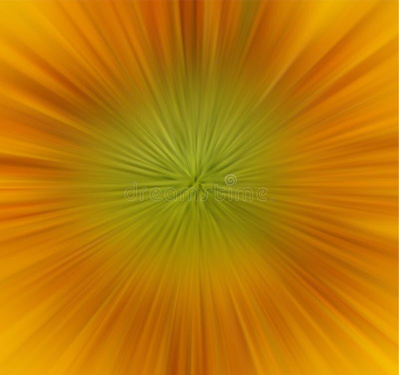 Fermez-vous vers le haut de la vue du tournesol jaune image stock