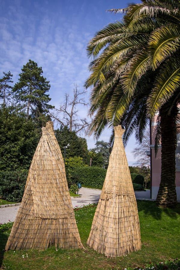Fermez-vous vers le haut de la vue de l'usine couverte de paume avec le protectio en bambou en bois photographie stock