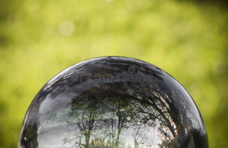 Fermez-vous vers le haut de la vue sur de beaux arbres de paysage dans le ciel bleu et le pré vert par la sphère de boule de lent photographie stock libre de droits