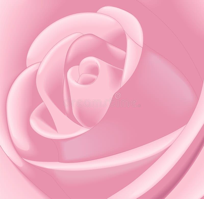 Fermez-vous vers le haut de Rose rose illustration libre de droits