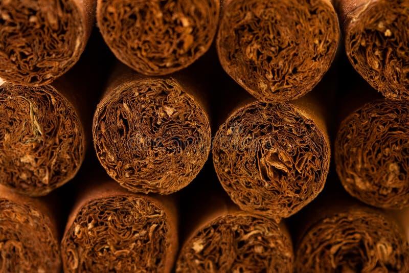 Fermez-vous vers le haut des cigares cubains photographie stock
