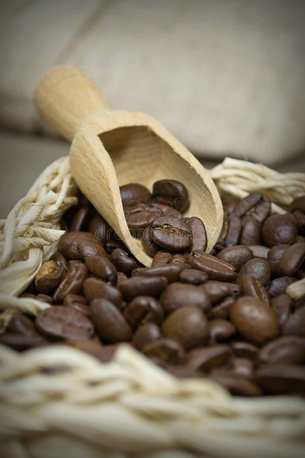 Fermez-vous vers le haut des grains de café photos libres de droits